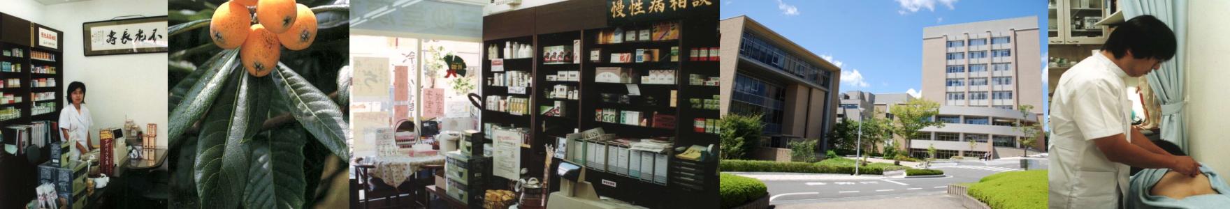 健康、美容鍼灸の三砂堂漢方